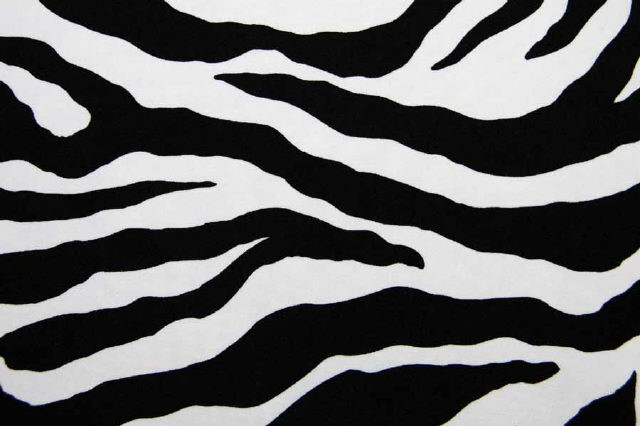 Where to find ZEBRA LINENS in Longview